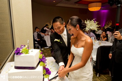 Wedding Cake Cutting with Patty's Cakes