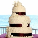 beach-wedding-sea-shells-home-made-look