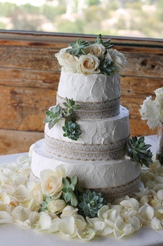 rustic country wedding cake 3 tier beautiful succulent wedding cakes patty s cakes 19493