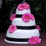 wedding-cake-white-pink-gerber-daisey-black-ribbon-round