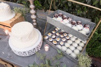 NancyL-cake-cake-balls