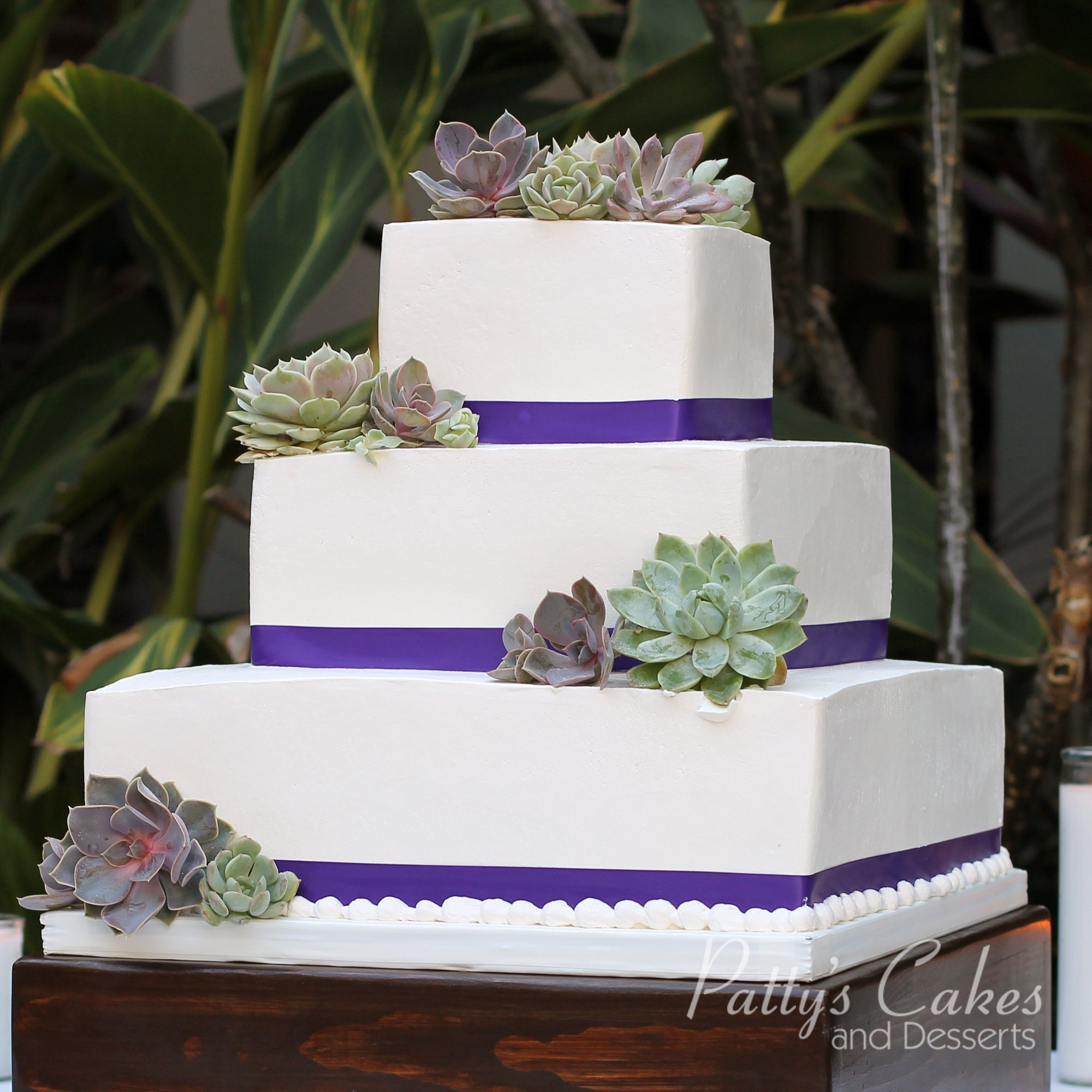 Photo Of A Succulent Wedding Cake Patty S Cakes And Desserts